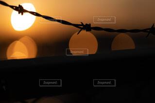 夕暮れと有刺鉄線の写真・画像素材[4424964]