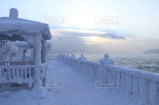 全てが凍る世界の写真・画像素材[4105689]