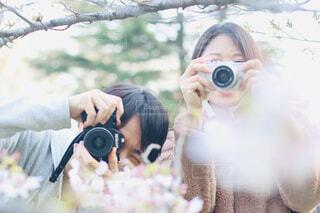 お花見をしながら写真を撮り合うの写真・画像素材[4274816]
