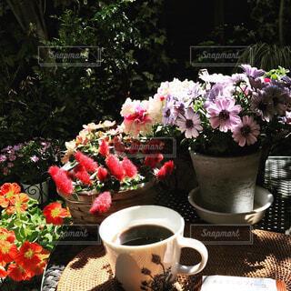 カフェ,花,コーヒー,屋外,花瓶,テーブル,樹木,植木鉢,リラックス,食器,カップ,観葉植物,おうちカフェ,ドリンク,おうち,ライフスタイル,コーヒー カップ,おうち時間