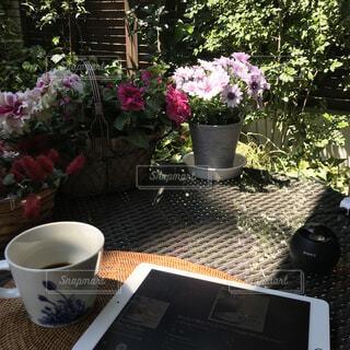 カフェ,花,コーヒー,屋外,花瓶,テーブル,樹木,植木鉢,リラックス,食器,カップ,観葉植物,おうちカフェ,ドリンク,iPad,おうち,ライフスタイル,おうち時間