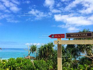 ビーチと標識の写真・画像素材[903064]