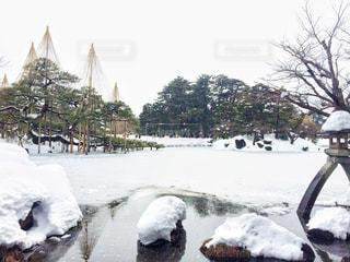 兼六園の雪景色の写真・画像素材[1746665]