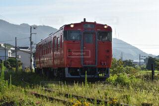 草に覆われた線路を走るローカル列車の写真・画像素材[4295083]