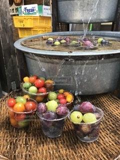 トマトとブドウの写真・画像素材[4655191]