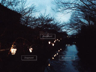 空,夜,屋外,湖,水面,樹木,明るい