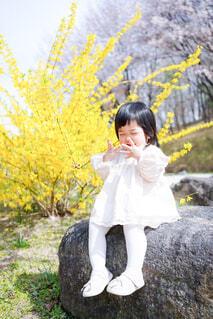お花見の写真・画像素材[4300102]