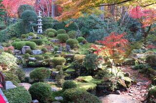 和の庭の写真・画像素材[4333680]