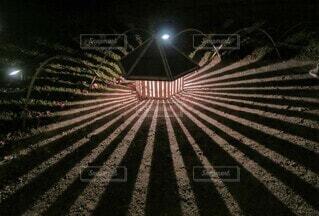 光と影のアートの写真・画像素材[4416930]