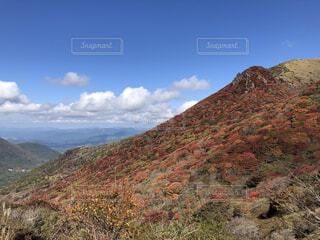 自然,風景,空,花,秋,紅葉,屋外,草原,雲,山,登山,草,丘,草木,山腹
