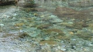 自然,屋外,きれい,川,水面,渓流,水がグリーン色