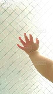 窓に手を付く幼児の写真・画像素材[4359487]