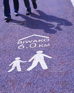 琵琶湖まで散歩の写真・画像素材[4307093]
