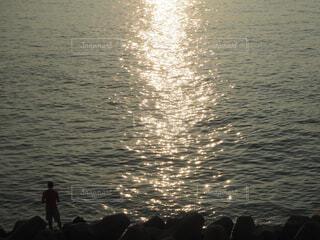 海のきらきらの写真・画像素材[4307140]
