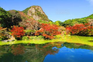 自然,秋,紅葉,赤,池,旅行,パワースポット,御船山