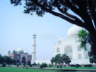 空,公園,建物,屋外,城,草,樹木,新緑,ドーム,モスク,インド,タージマハル,ランドマーク,記念碑,コロネード