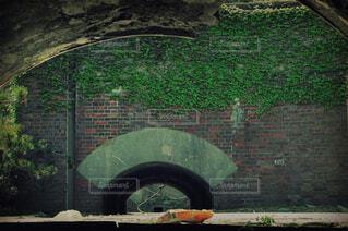 建物,屋外,林,景色,樹木,新緑,絵画,トンネル,アーチ,廃墟,石,蔦