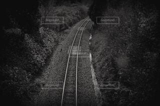 自然,空,屋外,電車,道路,線路,田舎,高速道路,樹木,道,旅行,トラック,鉄道,鉄道トンネル,黒と白