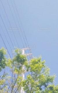 空,屋外,鉄塔,樹木,電線
