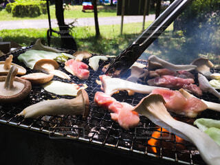 アウトドア,屋外,野菜,グリル,キャンプ,キャベツ,肉,料理,おいしい,バーベキュー,鶏肉,しいたけ,トング,えりんぎ