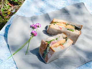 春のピクニックの写真・画像素材[4361298]