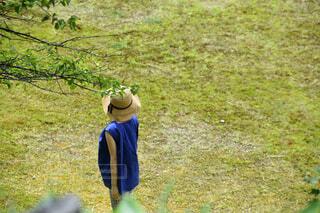 女性,風景,屋外,景色,草,麦わら帽子,ひと