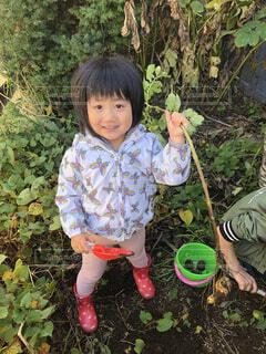 子ども,風景,屋外,樹木,人物,人,笑顔,少年,若い,草木,少し,人間の顔