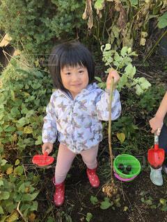 子ども,自然,風景,屋外,樹木,人物,人,赤ちゃん,幼児,休日,畑,休み,若い,少し,人間の顔