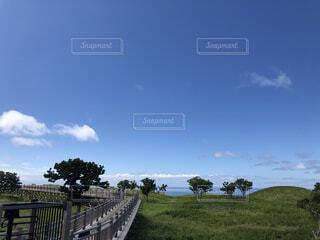 風景,空,建物,屋外,雲,草,樹木,草木
