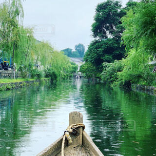 屋外,緑,舟,川,水面,景色,樹木,写り込み