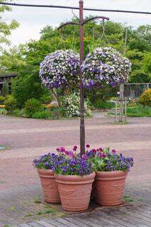 春の花のオブジェの写真・画像素材[4361323]