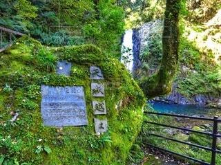 浄蓮の滝と天城越え石碑の写真・画像素材[4420199]
