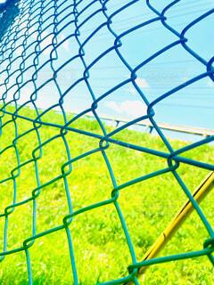 風景,空,建物,春,緑,晴れ,晴天,水色,景色,草,フェンス,パターン