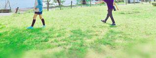 子ども,公園,春,夏,スポーツ,屋外,草原,ウォーキング,散歩,景色,草,人,広場,遊び場,アスレチック