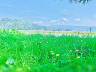 田舎の風景の写真・画像素材[4366126]