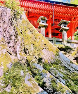 建物,木,屋外,赤,散歩,山,景色,観光,大木,苔,岩,切り株,石,寺,石灯籠,朱,木の幹