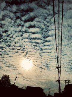 空,建物,夕日,木,屋外,太陽,雲,青,黒,影,日没,光,樹木,電柱,電線,電信柱,輝,家屋