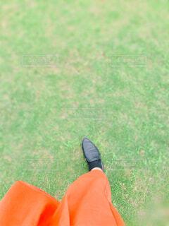 芝生の上を歩くの写真・画像素材[4434971]