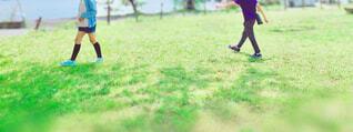 芝生の公園を歩く2人の子どもの写真・画像素材[4435964]