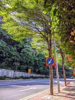 屋外,晴れ,散歩,道路,標識,観光,樹木,歩道,地面,海外旅行,通り,草木,交通標識,テキスト
