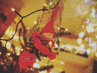 北欧のクリスマスの写真・画像素材[958519]