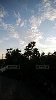 自然,空,屋外,雲,青空,夕暮れ,樹木,セミ,蝉,日中,真夏日,猛暑日,蝉の声,紺碧,ヒグラシ,蜩