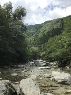 自然,屋外,川,水面,山,樹木,岩,草木