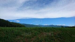 自然,風景,空,屋外,緑,白,雲,青,山,草,樹木,長野県,草木,日中,畦