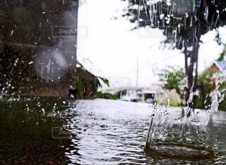 雨,屋外,湖,水面,樹木,土砂降り