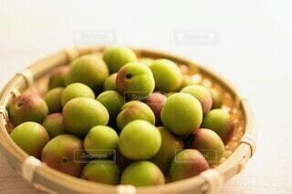 梅雨時期に収穫される小梅の写真・画像素材[4458319]