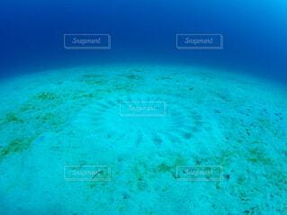 海,青,水面,水中,ダイビング,アクア,トルコ石,紺碧