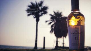 食べ物,自然,アウトドア,海,空,屋外,ビーチ,水,波,暗い,水面,ガラス,光,樹木,液体,旅,ワイン,ボトル,ビール,ヤシの木,ガラス瓶,ウイスキー,バー,ドリンク,アルコール,飲料,マッカラン,アルコール飲料,12年
