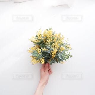 ミモザの花束の写真・画像素材[4346813]