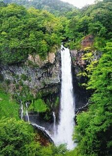 自然,風景,森林,屋外,綺麗,水面,滝,樹木,涼しい,新緑,旅行,山頂,楽しみ,草木,真っ直ぐ,日中,一本,美しさ,山腹,激しい,カスケード